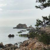 トルコのお手軽な避暑地 プリンセス諸島