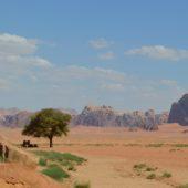 ワディラム―風の音しか聞こえない神々しい世界 (ヨルダン)