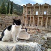アルテミス崇拝で栄えたエフェソスの遺跡 (トルコ)